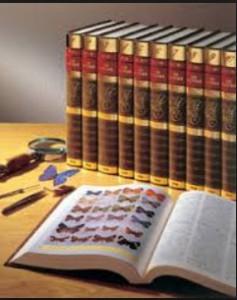 百科事典画像
