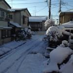 日記;雪二日目